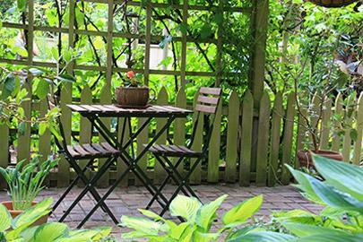 Plantation pour votre jardin à Maubeuge